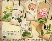 Tags - Set of 6 - Vintage Botanical Watercolour Tags
