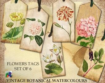 Tags - Set of 6 - Vintage Botanical Watercolour Tags