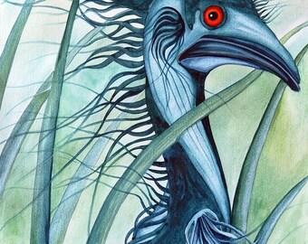 Caeruleus - Blue Emu - Unmatted Print