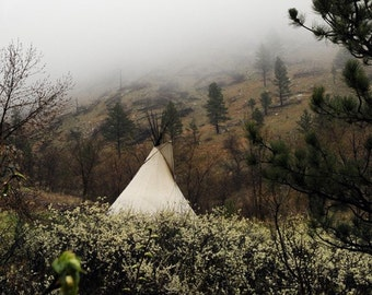 Tipi in Chokecherry Blossoms, 8x8 photo, Profits donated to official Standing Rock Legal Defense Fund