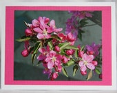 Greeting Card: pretty in pink
