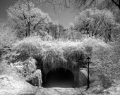 Great Lawn Tunnel in Central Park New York -  8x12 Fine Art Infrared Photograph