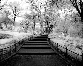 Entering Central Park New York - 8x12 Fine Art Infrared Photograph