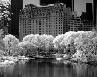 The Pond in Central Park New York -  8x12 Fine Art Infrared Photograph