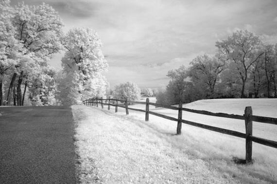 Going Home - 8x12 Fine Art Infrared Photograph