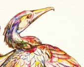 Cormorant Waterbird  Original Watercolor Painting