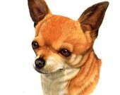 CHIHUAHUA SMOOTH DOG on 6 inch Fabric Squares for Quilting and Sewing