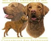 CHESAPEAKE BAY RETRIEVER Dog on One 18 x 22 inch Fabric Squares for Sewing