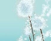 Perennial Moment (aqua) - 8x10 Print