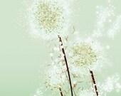 Dandelion Art - Perennial Moment (tea green) - 24x36 LARGE Print
