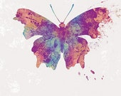 Butterfly Art - Jordy - Butterflies and Moths Series - 24x36 LARGE Wall Art Print Home Decor