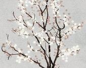 Silver Grey Tree Blossoms Art Print - Dancer in the Dark (silver) - 12x18 Print gray