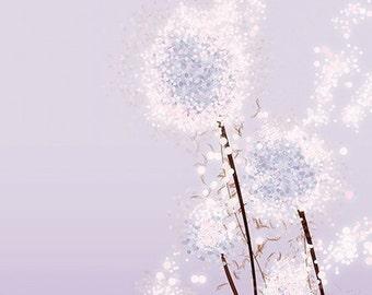 Purple Flower Dandelion Art - Perennial Moment (lavender) - 8x10 Print