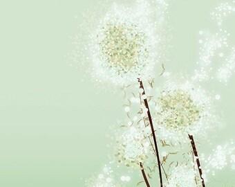 Dandelion Print, Dandelion Art, Dandelion Flower Art, Modern Dandelion Art - Perennial Moment (green) - 8x10 Print - Green