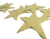 Yellow Seed Paper Star Favors - 20 count - 3 inch