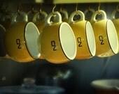 CN Cups