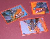 Rottie ROTTWEILER Dog Art MAGNETS - set of 3 from Paintings by Lynn Culp