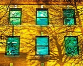 Golden autumn sunlight fall color teal windows dark shadows urban decor wall art fine art photography - 16x20