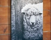 Sheep Art - Nursery Decor - French Country - Shabby Chic - Spring Decor nature photo art on wood panel  - 11x14 Ready To Hang