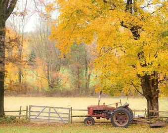 Fall Photography, rustic decor, autumn print, orange decor, fall art, splash of red, Buck County