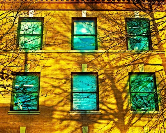 Window Photography, Golden Light, Fall Shadows, Autumn Sunlight, Teal Photography, urban decor, wall art, fine art photography