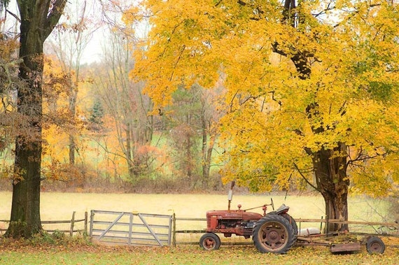 Nature Photography, autumn tractor, Bucks County Farm, orange fall rust red yellow golden leaves - fine art harvest photography