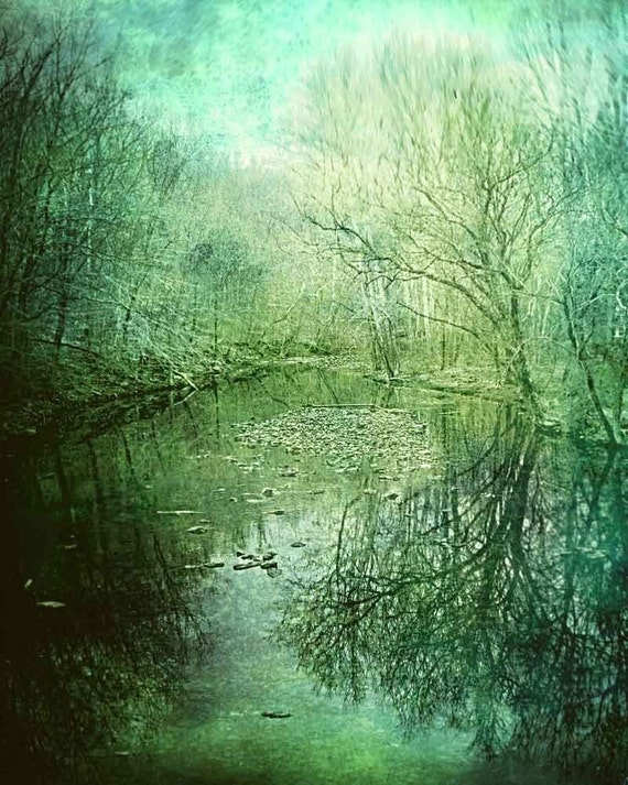 Forest Photography, woodland photograph, dark green color winter stream - Mystic River - Fine Art Nature Photography Green Art