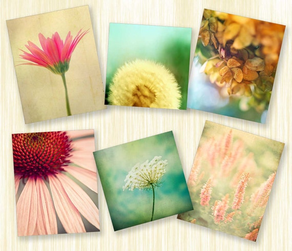 Spring photography flower prints Wall Art home decor garden prints nature photos pastel shades art photo botanical print set 6 5x5 5x7