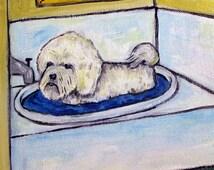Bichon Frise tile- bathroom art, bathroom tile, bichon frise tile, dog tile, dog art, bichon frise art