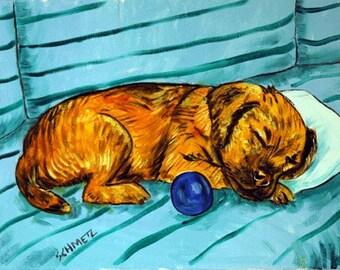 Border Terrier , border terier art, gift, sleeping dog, 11x14 print, boder terrier print, modern folk art, folk art