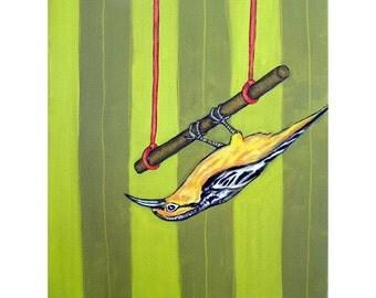 Oriole,oriole art, oriole print, trapeze, 11x14 PRINT, bird art, bird PRINT, modern folk art gift