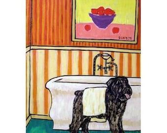Bouvier Des Flandres Drying Off Dog Art Print