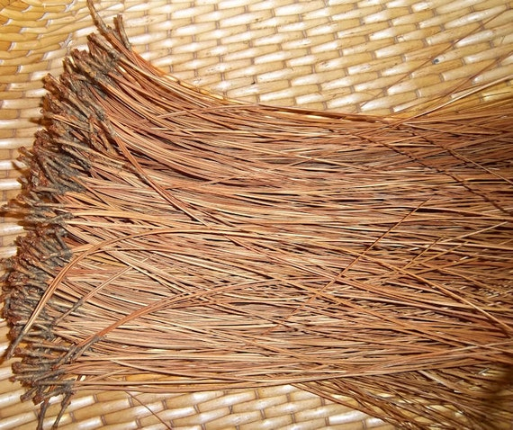 PINE NEEDLES for Basketry or Gourd Crafts - Premium Long Leaf