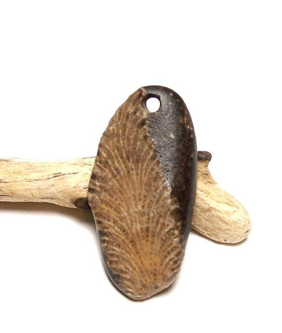 HERMIT  - Genuine Drilled Beach Stone - Authentic Fossil - diy