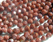 Chesnut Coral 6mm Fire Polish Faceted Round Czech Glass Beads   25