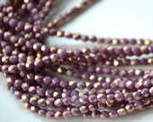 Medium Amethyst 3mm Faceted Fire Polish with Gold wash czech glass beads   50