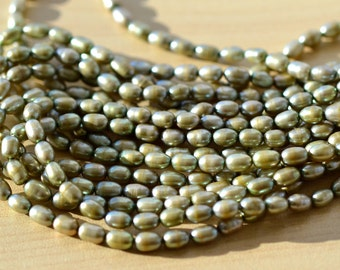 Sage Green Thin Rice Freshwater Pearl Beads   FULL STRAND