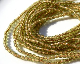 Olivine COpper Lined 3mm Faceted Round Czech Glass Beads   50