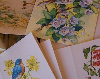 a delightful assortment of all occasion cards