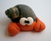 Hermit Crab - Paguro Bernardo (No71) - A Little Polymer Clay Creation