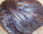 Concord Merino and Tussah Silk Roving 2 oz