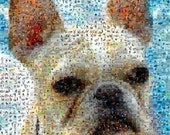 French Bulldog Mosaic Montage 8 x 10 Art Print, limited edition