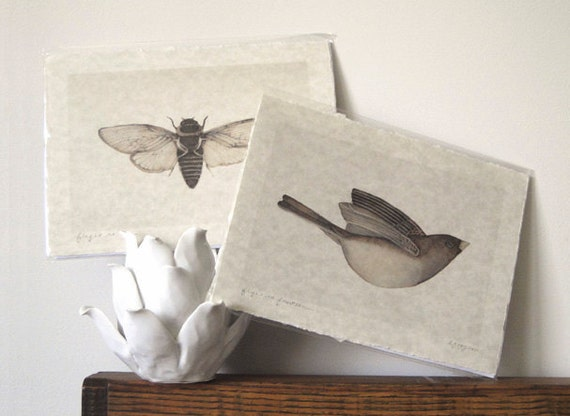 cicada art bird art neutral hand torn parchment prints set of two
