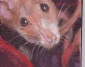 Pet Rat, Bright Eyes, ACEO Magnet,art trading card,rat portrait,affordable art,,collectible art,small art,
