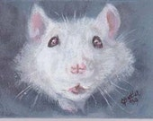 White Rat....Who Me Original ACEO magnet 2 x 3 small portrait of pet  aceo magnet  aceo on easel