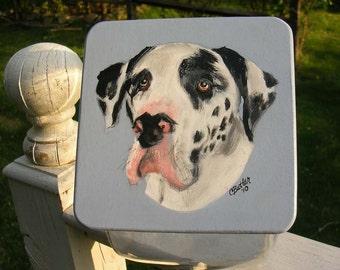 Custom Great Dane Treat Jar, handpainted pet treat jar, custom airtight lid for pet treat jar, glass jar, portrait of pet on  treat jar
