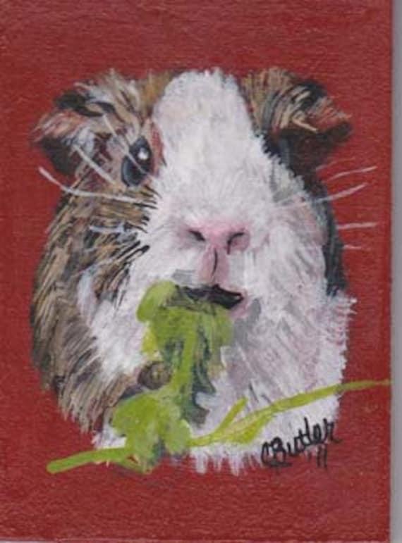 Guinea Pig ACEO ,small pet portrait on aceo, gerbil portrait. 2-1/2  x 3 -1/2portrait aceo on easel,art trading card