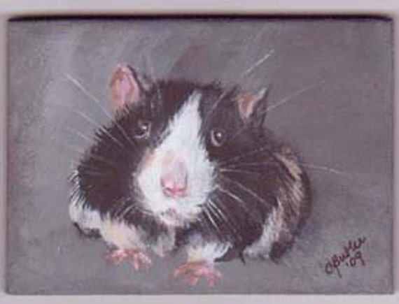 Rat, ACEO magnet,  aceo magnet, 2 x 3 small pet portrait, aceo on easel,art trading card,collectible art,small art, black and white rat