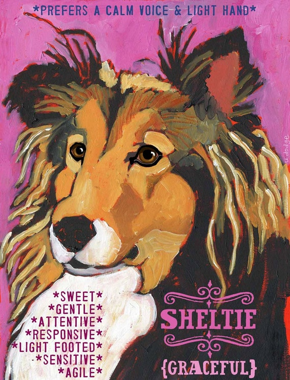 Shetland Sheepdog (Sheltie) No. 2 - Set of 6 Blank Cards with Envelopes in Clear sleeve