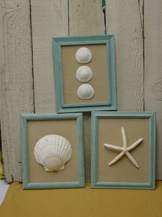 SET OF THREE beach cottage chic framed shells / beach theme wedding decor / Tiffany blue frames with white fingerling starfish / handcrafted